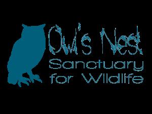 owls nest logo 1 copy